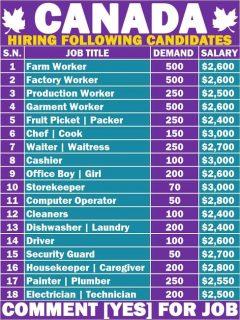 Hiring Multiple Jobs In Canada