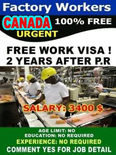 Urgent Vacancy Open In Canada