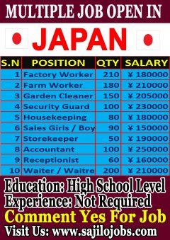 Multiple Job Open In Japan