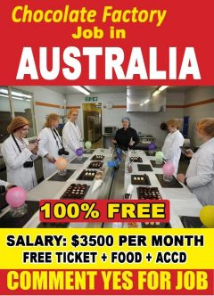 Factory Worker Jobs In Australia