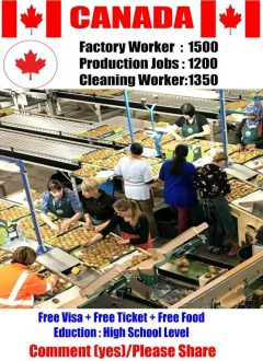 Urgent Hiring Jobs In Canada