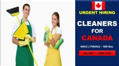 Carpet Cleaner Jobs In Canada